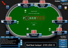 pokerview review
